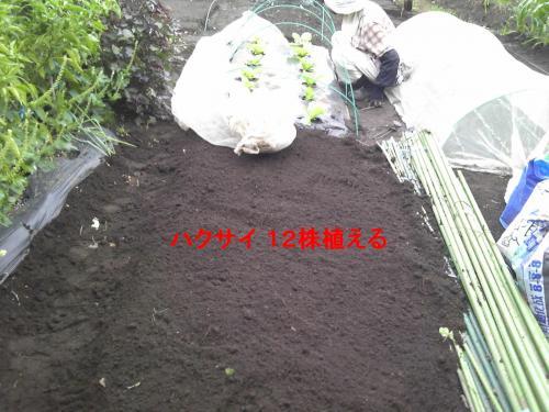 140910_100839_convert_20140910132557.jpg